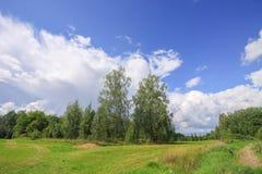 Summer landscape in Latvia, East Europe. Birch trees and forest. Summer landscape in Latvia, East Europe. Birch trees and forest stock images