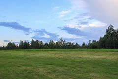 Summer landscape in Latvia, East Europe. Green field and forest. Summer landscape in Latvia, East Europe. Green field and forest royalty free stock photos