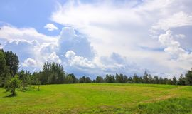 Summer landscape in Latvia, East Europe. Green field and forest stock images