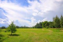 Summer landscape in Latvia, East Europe. Green field and forest. Summer landscape in Latvia, East Europe. Field and forest royalty free stock image
