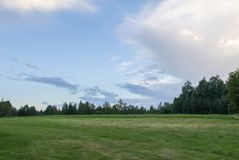 Summer landscape in Latvia, East Europe. Green field and forest royalty free stock photography