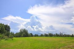 Summer landscape in Latvia, East Europe. Green mown field and forest stock image
