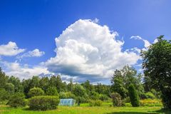 Summer landscape in Latvia, East Europe. Green trees and small greenhouse. Summer landscape in Latvia, East Europe. Green trees and small greenhouse royalty free stock photography