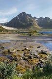 Summer landscape of Lofoten Islands Stock Images