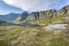 Summer landscape in Lofoten islands Royalty Free Stock Photos