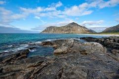Summer landscape of Lofoten, Norway. Summer norwegian landscape, Lofoten, Norway royalty free stock image