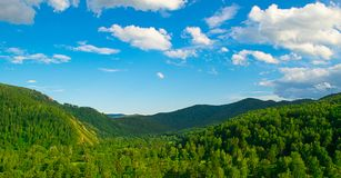 Summer landscape magnificent green hills and forest with different trees against the blue sky. Russia Siberia. royalty free stock photography