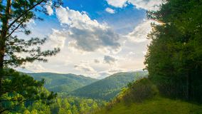 Summer landscape magnificent green hills and forest with different trees against the blue sky. Russia Siberia. royalty free stock images