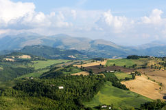 Summer landscape in Marches (Italy) Royalty Free Stock Images