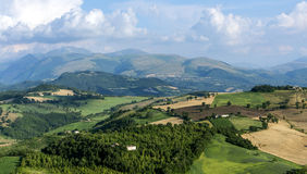 Summer landscape in Marches (Italy) Stock Photography