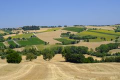Summer landscape in Marches Italy near Appignano. Rural landscape along the road from Appignano to Montecassiano Ancona, Marches, Italy, at summer Stock Photos