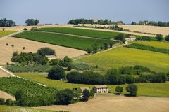 Summer landscape in Marches Italy near Appignano. Rural landscape along the road from Appignano to Montecassiano Ancona, Marches, Italy, at summer Royalty Free Stock Image