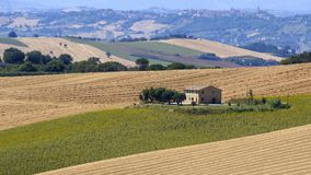 Summer landscape in Marches Italy near Appignano. Rural landscape along the road from Appignano to Montecassiano Ancona, Marches, Italy, at summer Royalty Free Stock Photos
