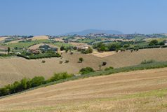 Summer landscape in Marches Italy near Appignano. Rural landscape along the road from Appignano to Montecassiano Ancona, Marches, Italy, at summer Royalty Free Stock Photography