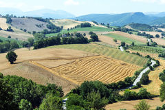 Summer landscape in Marches (Italy). Summer landscape  near Camerino (Macerata, Marches, Italy Royalty Free Stock Photo