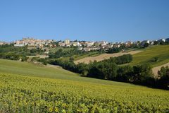 Summer landscape in Marches Italy near Filottrano. Rural landscape along the road from Jesi to Filottrano Ancona, Marches, Italy, at summer.. Fields of Royalty Free Stock Image