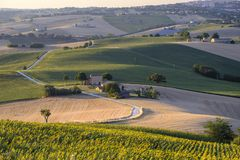 Summer landscape in Marches Italy near Filottrano. Rural landscape along the road from Filottrano to Appignano Ancona, Marches, Italy, at summer Stock Photography