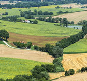 Summer landscape in Marches (Italy) Royalty Free Stock Image
