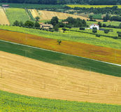 Summer landscape in Marches (Italy) Royalty Free Stock Photography