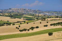 Summer landscape in Marches Italy near Montefano. Rural landscape along the road from Montefano to Castelfidardo Ancona, Marches, Italy, at summer Royalty Free Stock Photos