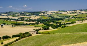 Summer landscape in Marches Italy near Ostra Stock Photo
