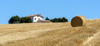 Summer landscape in Marches (Italy). Landscape near Tolentino (Macerata, Marches, Italy) at summer Royalty Free Stock Photography