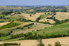 Summer landscape in Marches near Barchi Royalty Free Stock Photo