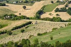 Summer landscape in Marches near Barchi Stock Photo