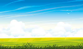 Summer landscape with meadow and clouds Stock Photography