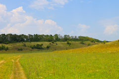 Summer landscape with meadow, trees and hills Stock Photos
