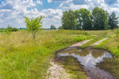 Summer landscape with meandering earth road Royalty Free Stock Image
