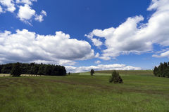Summer landscape in the middle of Vysocina, Czech Republic Royalty Free Stock Photos