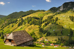 Summer landscape. At Moeciu, Brasov, Romania Royalty Free Stock Image