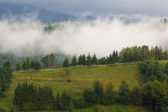 Summer landscape. At Moeciu, Brasov, Romania Stock Image