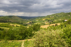 Summer landscape in Monferrato (Italy) Royalty Free Stock Photos
