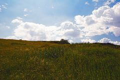 Summer mountain landscape. Summer landscape on the mountain against the sky and clouds Stock Photos