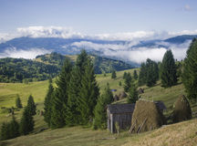 Summer landscape on mountain Royalty Free Stock Images
