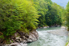 Summer landscape with mountain river. Belaya River in Republic of Adygea, Russia Stock Images