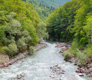 Summer landscape with mountain river. Belaya River in Republic of Adygea, Russia Royalty Free Stock Photography
