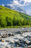 Summer landscape with a mountain river Royalty Free Stock Photo