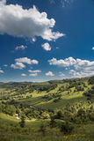 Summer landscape on the mountain Royalty Free Stock Photo