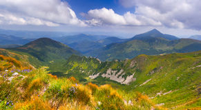Summer landscape in the mountains Stock Images