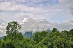 Summer landscape in the mountains with beautiful low clouds Stock Photos