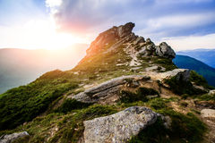 Summer landscape in the mountains Stock Image