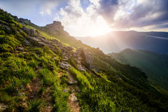 Summer landscape in the mountains Royalty Free Stock Photo