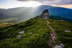 Summer landscape in the mountains Royalty Free Stock Photography