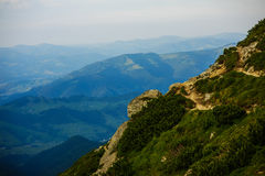 Summer landscape in the mountains Royalty Free Stock Image