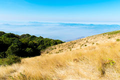 Summer landscape in the mountains Stock Photography