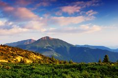 Summer landscape in mountains a sunny day Royalty Free Stock Photos