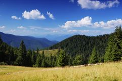 Summer landscape in mountains a sunny day Stock Photography